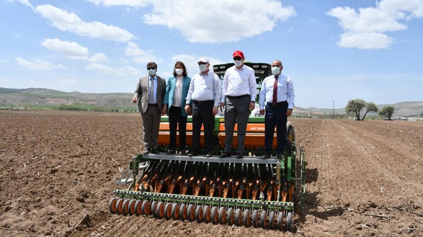 Sivas'ta İlk Kenevir Tohumları Toprakla Buluşturuldu